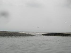 Sany0176