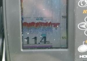 Imgp1037